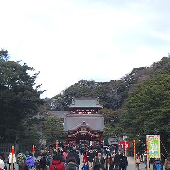0113鶴八